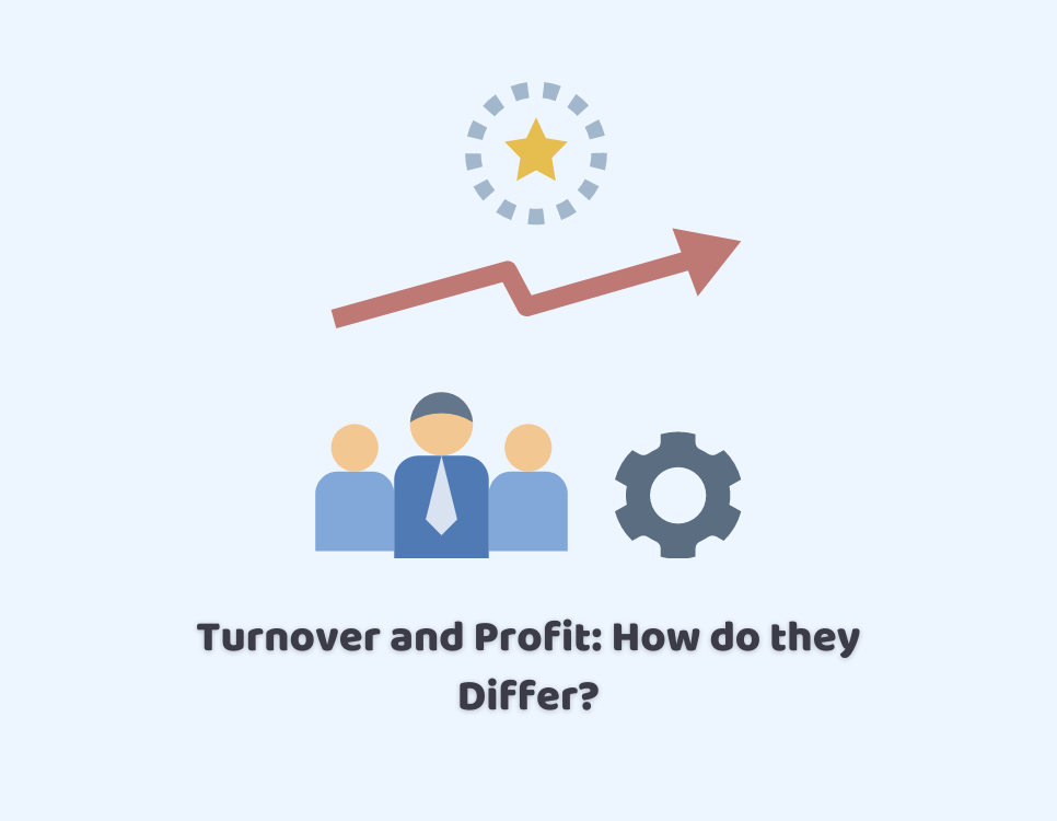 turnover and profit