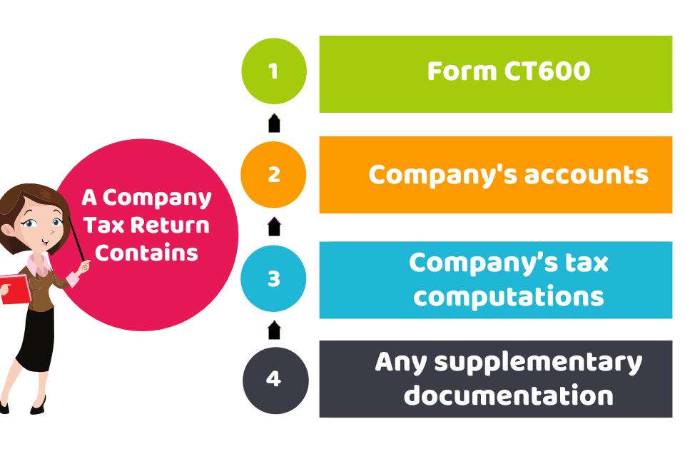 A Company Tax Return Contains
